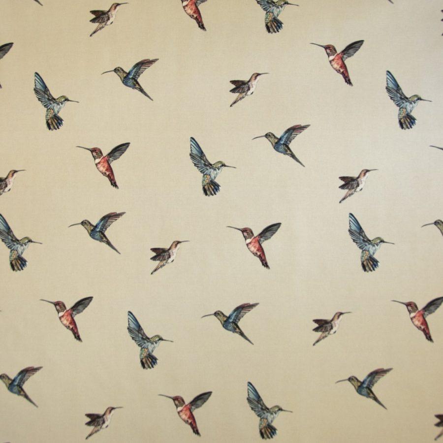 Hummingbirds - Cream