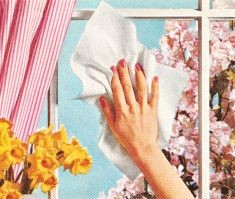 Spring Cleaning... Top Tips 8